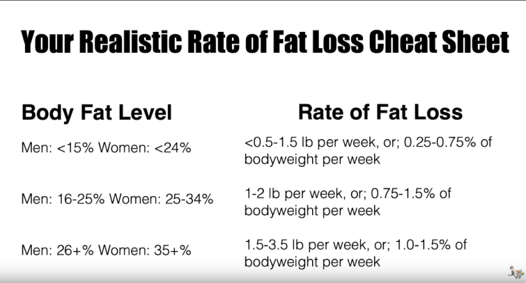 fat loss how fast.png